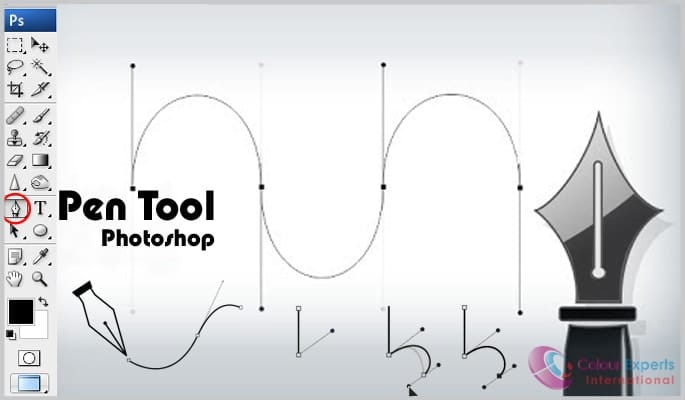 Pen Tool Photoshop